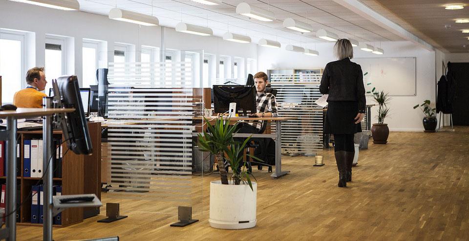 Las empresas podrán acoger gratis a alumnos Erasmus+ durante este otoño