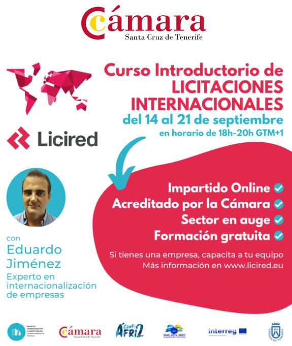 Curso Introductorio de Licitaciones Internacionales